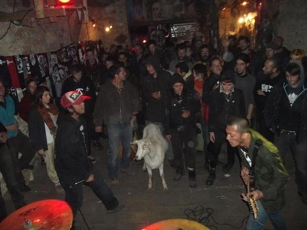 wormrot grindcore singapore extreme metal