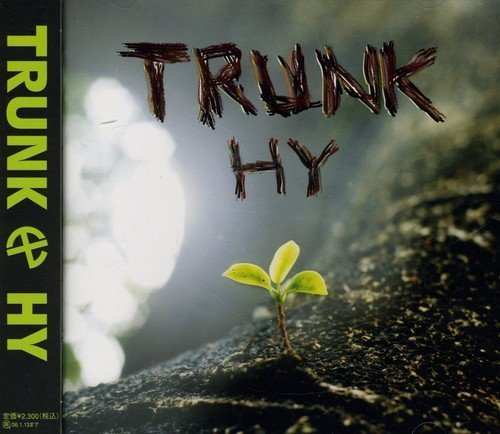 Image result for hy trunk